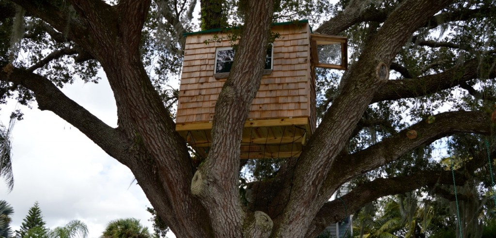 The Butera's Tree House